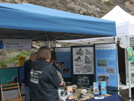 The Marine Mammal Center had a popular booth.